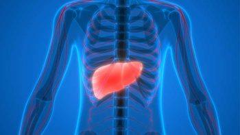 Karaciğer Ağrısı Nereye Vurur?